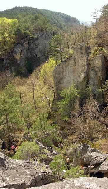 Вид на каньон с вершины скалы