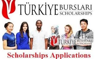 Türkiye Undergraduate Scholarship Program