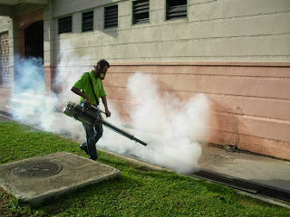 what is fumigation