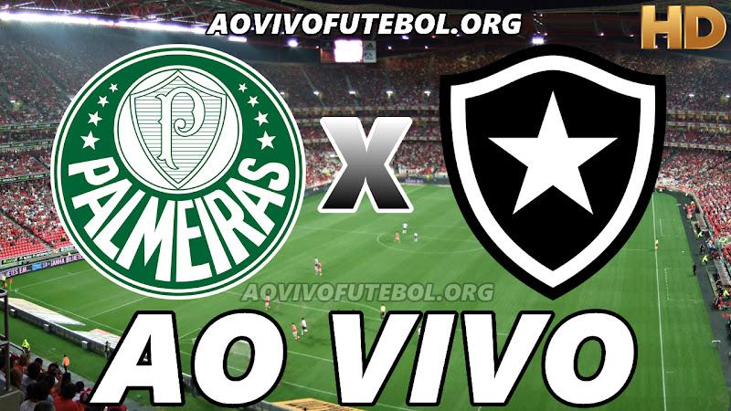 Palmeiras x Botafogo Ao Vivo Hoje em HD