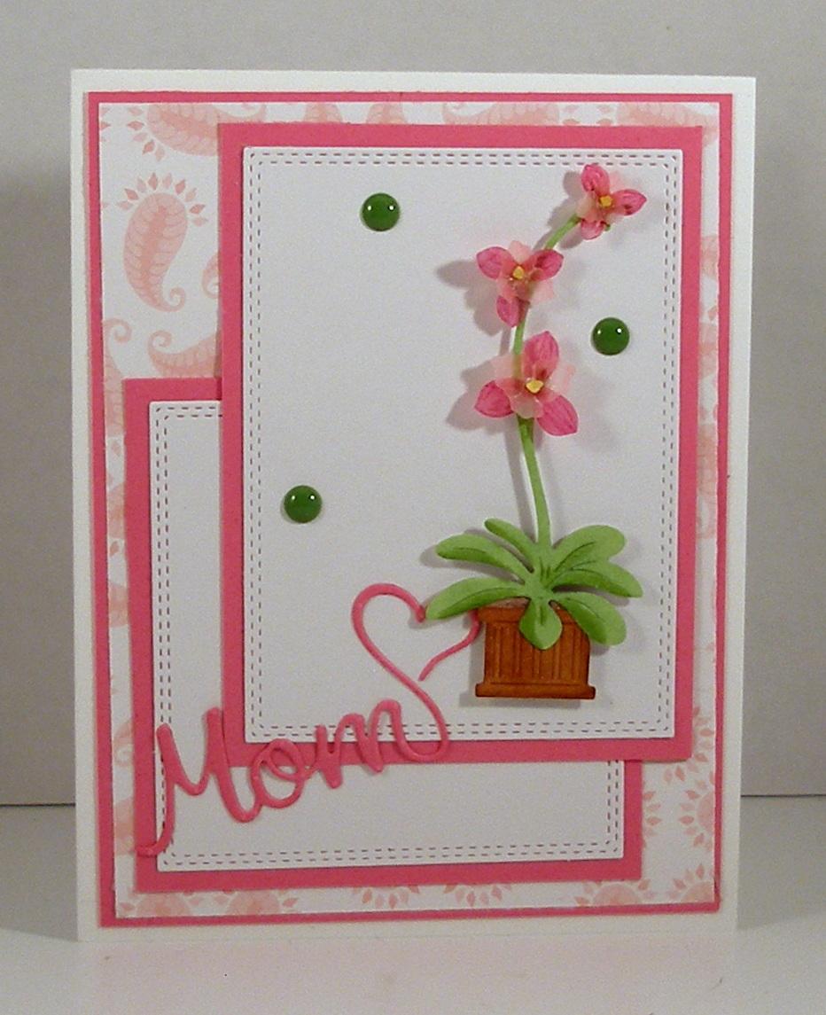 scrapping cottage Orchids에 대한 이미지 검색결과