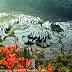 Çin'de iki yer UNESCO listesine girdi