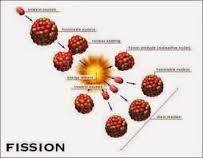 تركيب النواة والنشاطات الإشعاعية