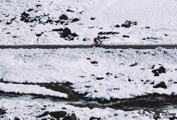 Elvetia-iarna-poza