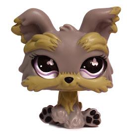 Littlest Pet Shop Singles Yorkie (#883) Pet