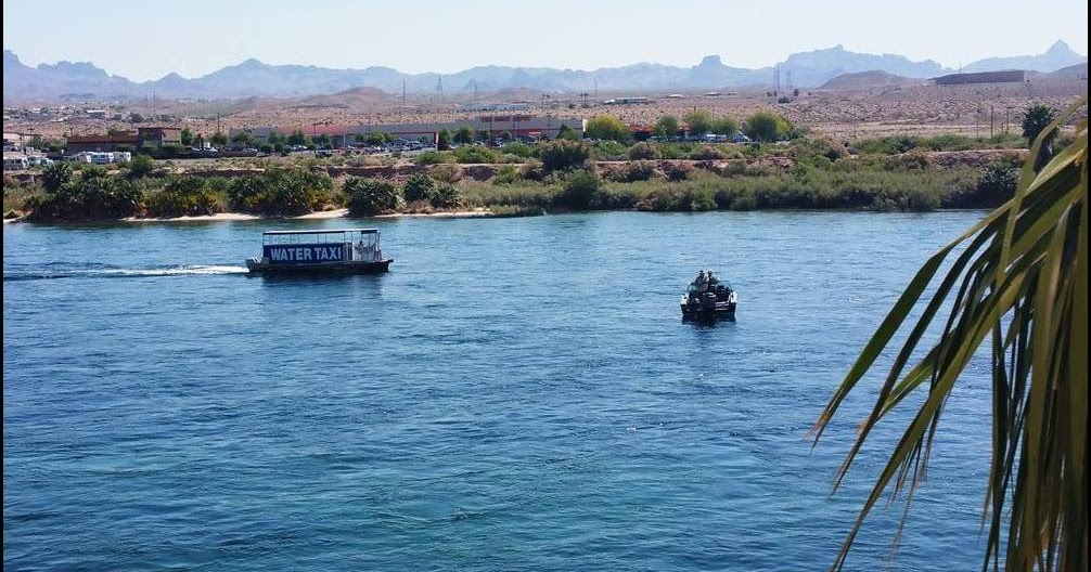 Laughlin buzz southern nevada fishing reports for january for Willow beach fishing report