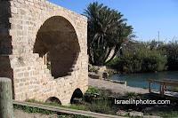 Таниним (Крокодилья река) — река в Израиле