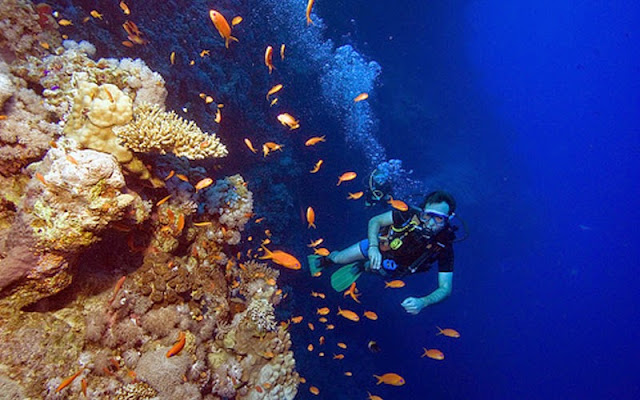Gunung Mahangetang lebih di kenal di wilayahnya dengan sebutan Gunung Mahangetang, Gunung Api Bawah Laut