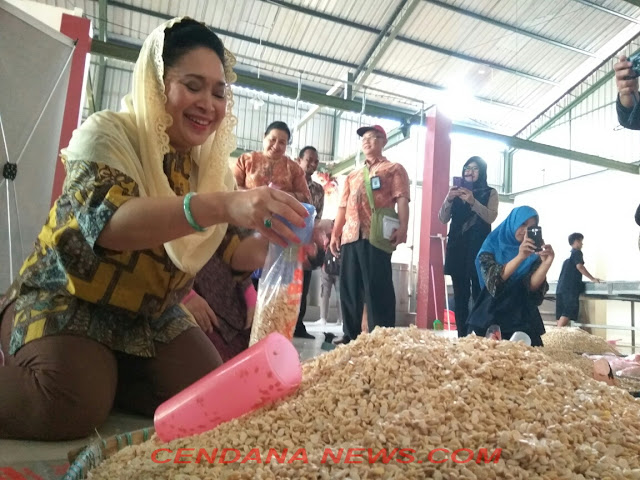Titiek Soeharto di Pabrik tempe dangsul di Desa Banguntapan, Bantul.