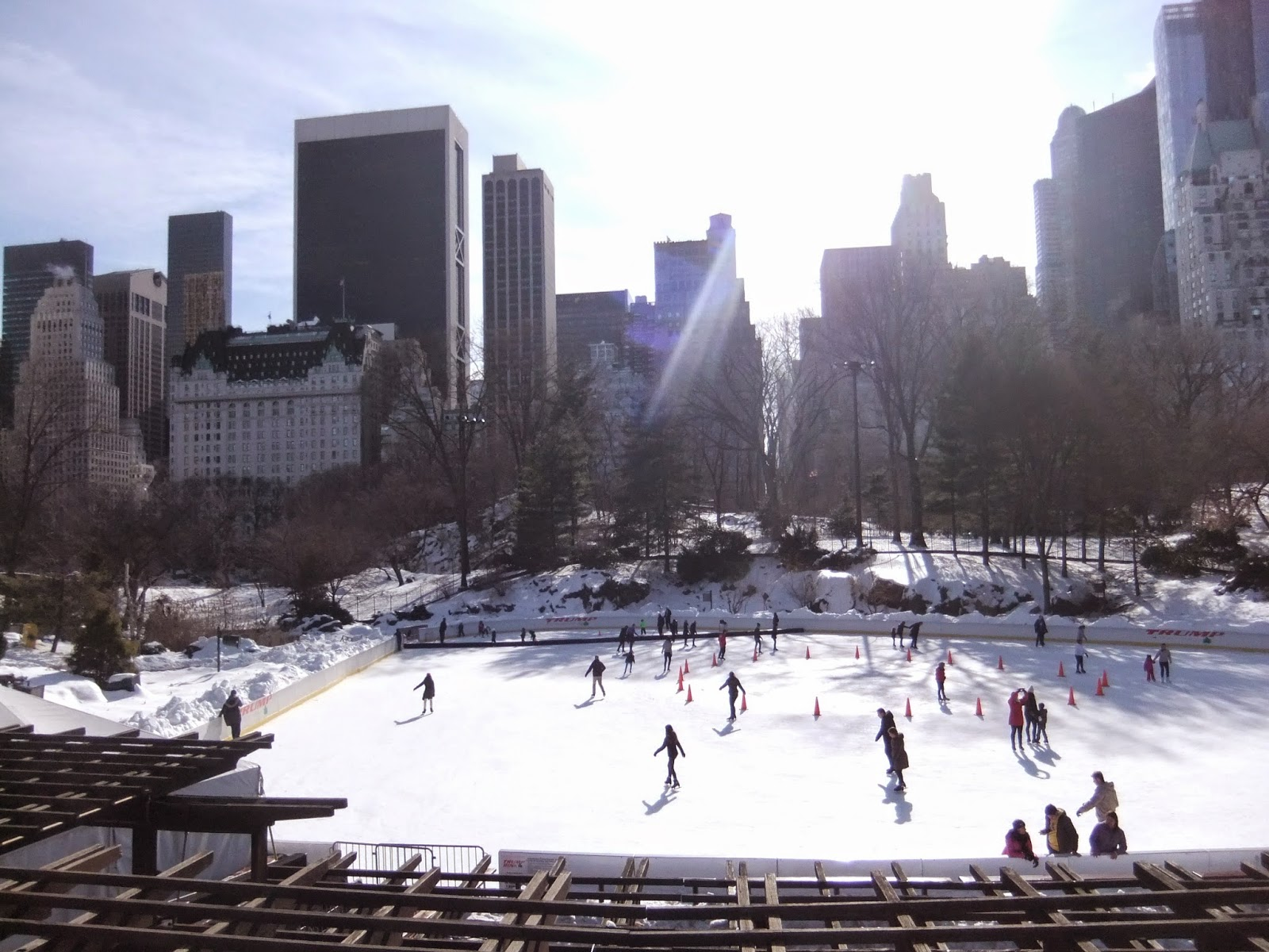 Central Park Ice Skating Rink