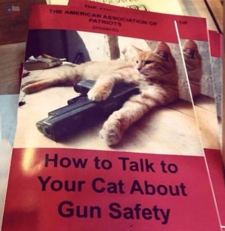 Funny How To Talk To Your Cat About Gun Safety