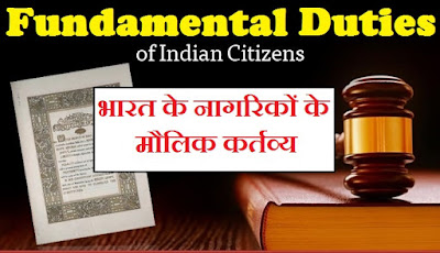 Our Fundamental Rights in hindi