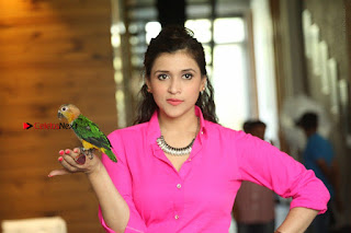 Actress Mannar Chopra in Pink Top and Blue Skirt at Rogue movie Interview  0229.JPG