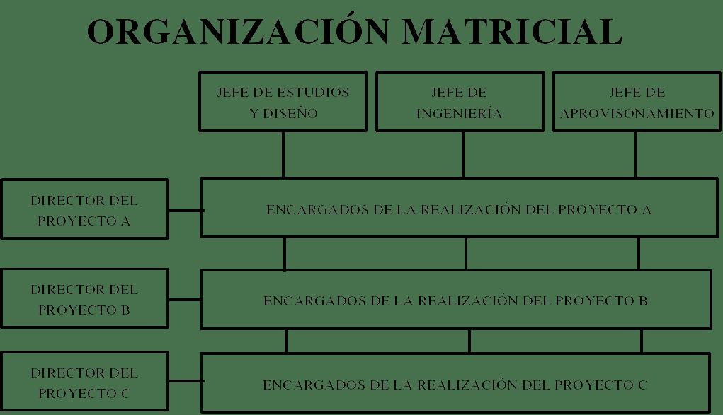 Estructura Organizacionales Estructura Organizacional