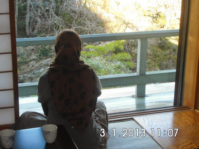 View onsen resort