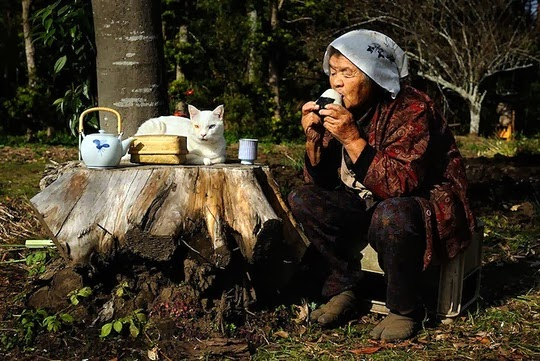grandmother and cat