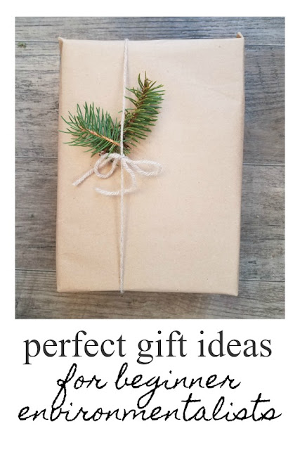 The Perfect Gift List for a Beginner Environmentalist