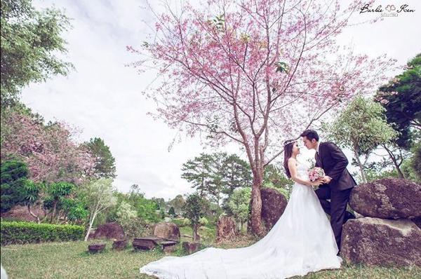 chụp ảnh cưới tuyệt đẹp tại Đà Lạt