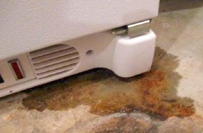 Nguyên nhân tủ lạnh Hitachi Chảy nước:
