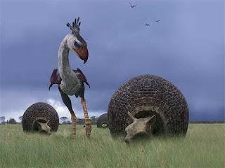 ave del terror cazando