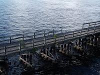 Antiguo puente sobre el Myakka River
