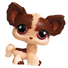 Littlest Pet Shop Multi Packs Chihuahua (#385) Pet