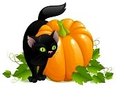 cat n pumpkin