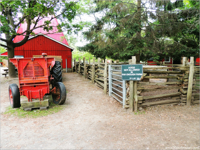The Far Enough Farm en las Islas de Toronto
