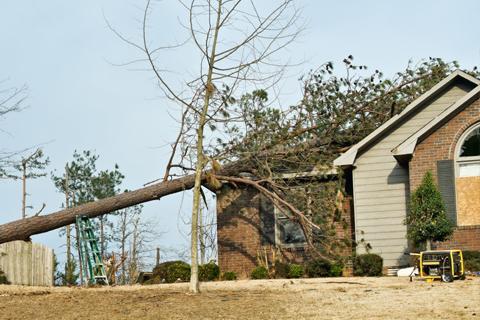 Neighbors tree fell on my house Alpharetta Ga