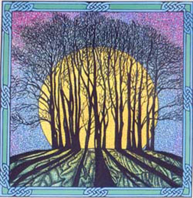Halcyon Days Winter Solstice And Other Musings