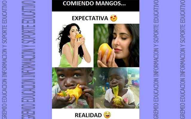 ¿Cómo se hace la mermelada de mango? Entre lo ácido y dulce