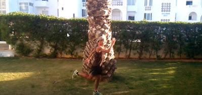Aquecimento e alongamentos dinâmicos antes de correr - Nuno Gonçalves