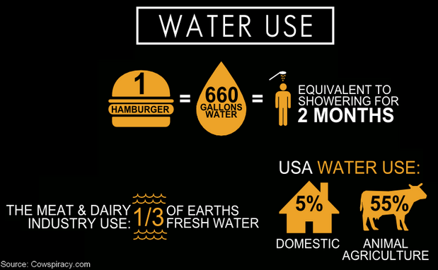 Image result for cowspiracy