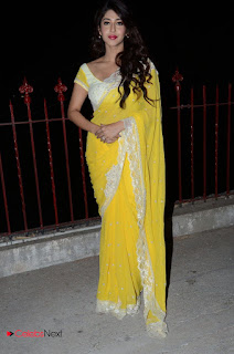 Actress Sonarika Bhadoria Stills in Yellow Saree  0127