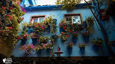 Patio Vesubio en Córdoba, el patio azul