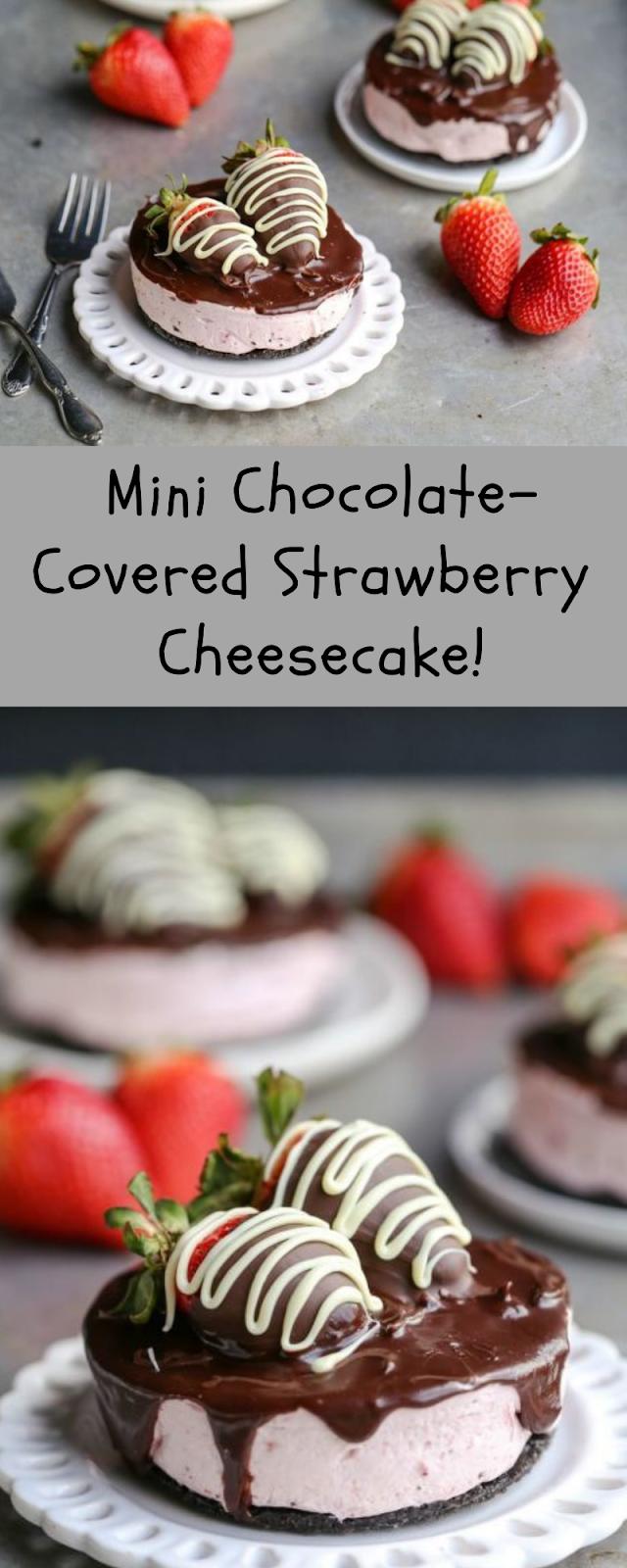 Mini Chocolate-Covered Strawberry Cheesecake