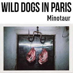 dirtyharrry in WILD DOGS IN PARIS