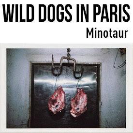 dirtyharrry in WILD DOGS IN PARIS