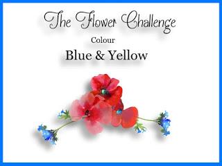 http://theflowerchallenge.blogspot.ca/2017/01/the-flower-challenge-4-blue-yellow.html