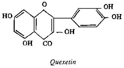 Thành phần hóa học quả Cây Mơ - Prunus armeniaca - Nguyên liệu làm thuốc Chữa Ho Hen