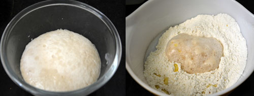 dough preparation for masala buns