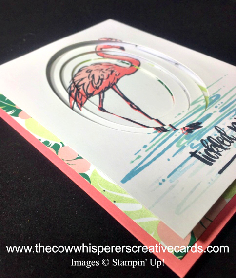 Card, Telescoping, Fabulous Flamingo, Tropical Escape Designer Series Paper