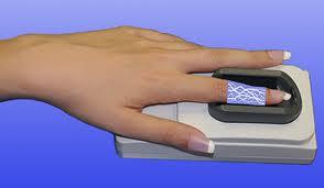 Biometria vascular