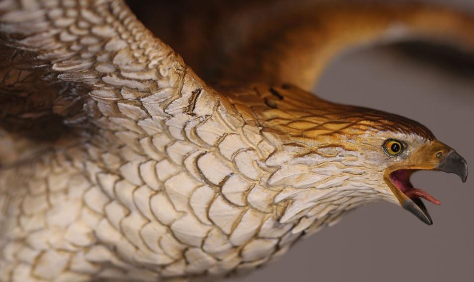 Bayek's Eagle