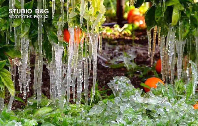 Παγετός στην Αργολίδα από την πτώση της θερμοκρασίας στους -2 βαθμούς