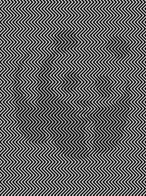 Hidden Panda in Zigzag lines picture