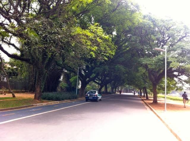 Parque Ibirapuera - Pista de caminhada e ciclofaixa