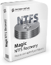 Download Magic NTFS Recovery