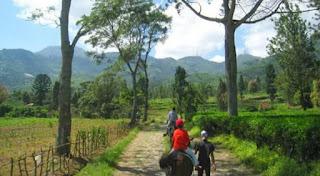 Agro Gunung Mas