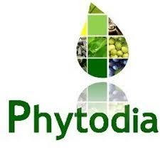 blog logo le monde de prisca phytodia